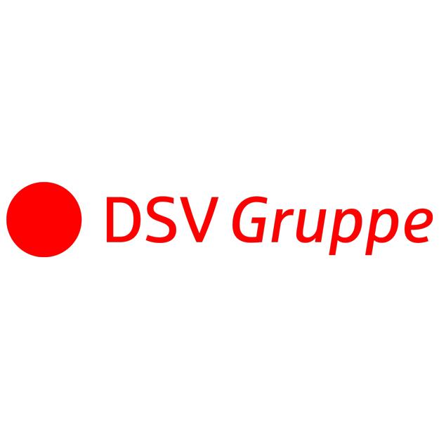 DSV Gruppe Logo